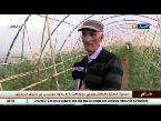 المغرب اليوم  - الحاج عبد السلام قدوة الشباب في النهوض بالزراعة وخدمة الأرض