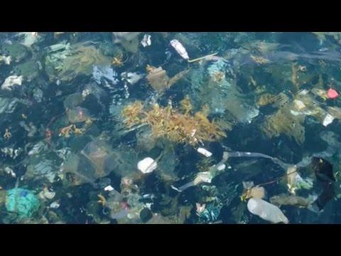 المغرب اليوم  - العثور على جزر من القمامة في خليج تايلاند