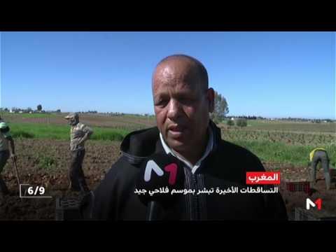 المغرب اليوم  - شاهد التساقطات المطرية الأخيرة تبشر بموسم فلاحي جيد
