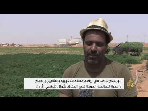 المغرب اليوم  - استخدام المياه المعالجة في الزراعة في مخيم الزعتري