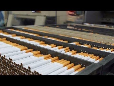 المغرب اليوم  - تعرف على كيفية صناعة السجائر