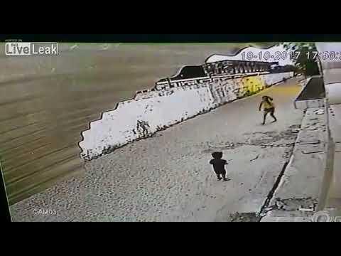 المغرب اليوم - شاهد لص يُهاجم امرأة ويسرق هاتفها عنوة