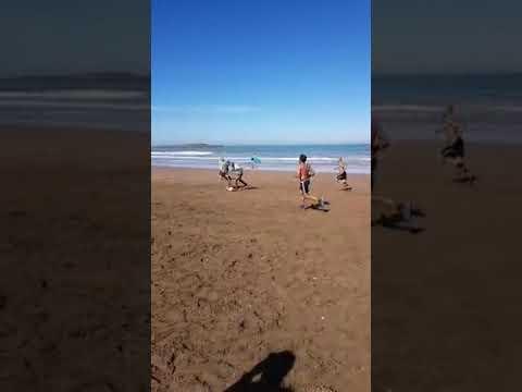 شاهد لعب الفريق على الشاطئ ومراوغة حجي لرونار