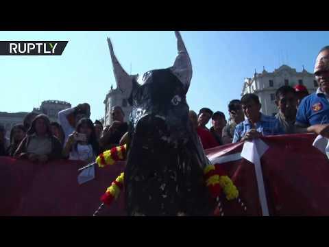 شاهد هكذا احتج البيروفيون على مصارعة الثيران
