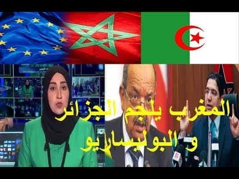شاهد ردة فعل المغرب القوية تجاه الجزائر والبوليساريو