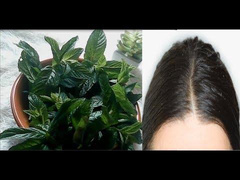 شاهد طريقة للتخلص من مشاكل الشعر المزعجة