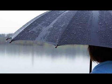 شاهد تعرف على مواعيد سقوط الأمطار خلال هذا الأسبوع