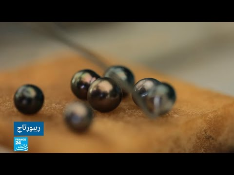 شاهد كيفية استخراج لؤلؤة تاهيتي التي تُقدر بآلاف اليوروهات