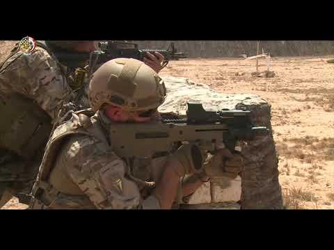 رئيس أركان حرب القوات المسلحة المصرية الفريق محمد فريد يشهد أحد الأنشطة التدريبية البحرية