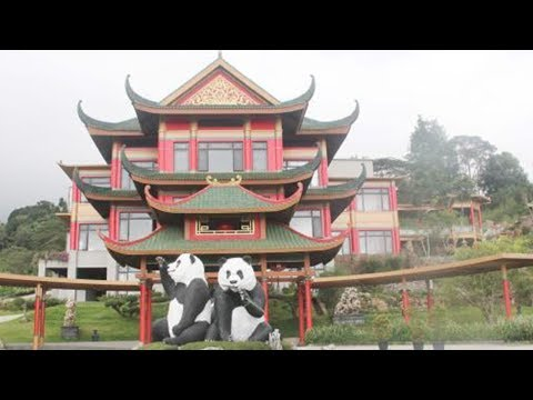 panda sanctuary opens to indonesian public