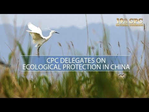 cpc delegates on ecology and environmental protection
