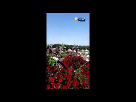 المغرب اليوم  - شاهد حديقة ساحرة في دبي تخطف الأنظار