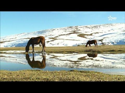 المغرب اليوم  - بالفيديو افران المغربية تختزل سحر الطبيعة الجبلية