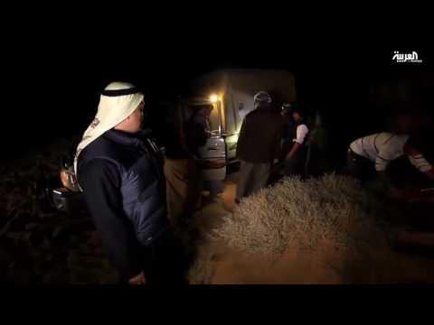 المغرب اليوم  - بالفيديو  معاناة فريق على خطى العرب في الصحراء