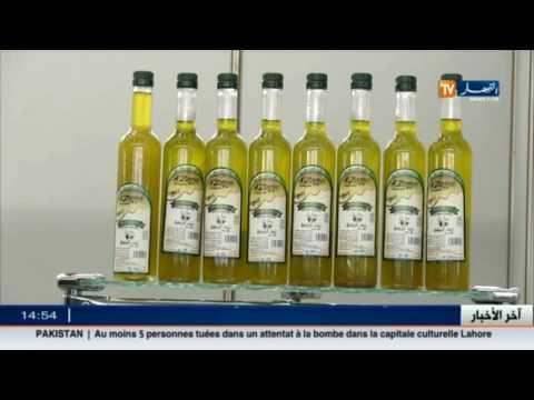 المغرب اليوم  - شاهد زيت الزيتون ثروة تغض الجزائر عنها البصر
