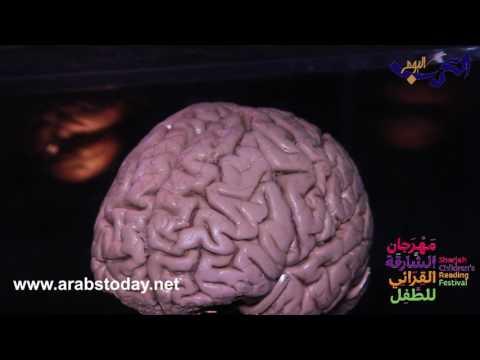 المغرب اليوم  - شاهد جولة مذهلة عبر الدماغ في مهرجان الشارقة
