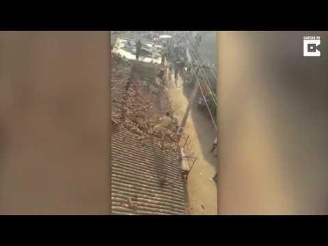 المغرب اليوم  - هجوم نمر يجبر عامل إنقاذ على القفز من فوق سطح منزل