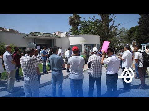 المغرب اليوم  - الحركة الانتقالية تدفع أساتذة للمطالبة برحيل حصاد
