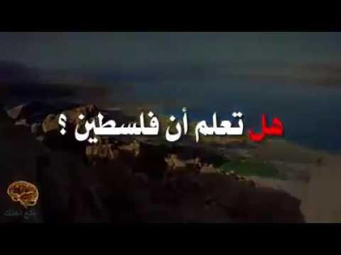 المغرب اليوم  - بالفيديو  معلومات خطيرة عن فلسطين لم تسمع عنها من قبل