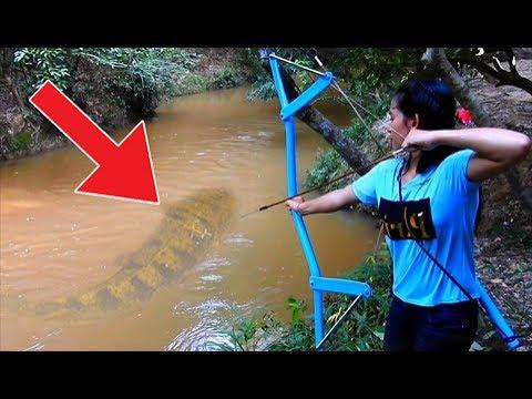 المغرب اليوم  - شاهد أخطر 7 حيوانات وجدوها بالصدفة في الأنهار