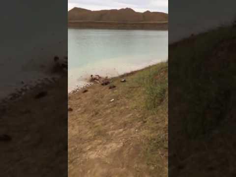 المغرب اليوم  - شاهد نهاية مؤلمة لشاب حاول القفز من أعلى جبل في البحر