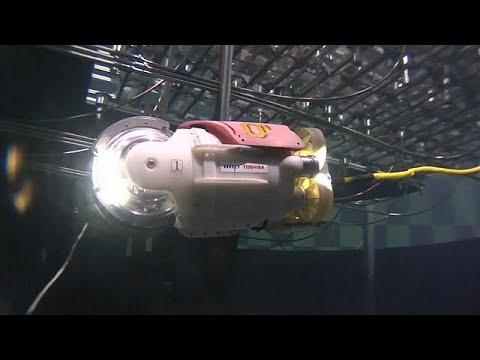 المغرب اليوم  - شاهد ابتكار روبوت السمكة الصغيرة لتقصي الحطام
