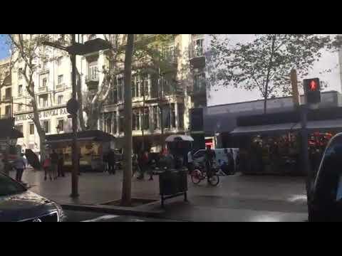 المغرب اليوم  - شاهد 13 قتيلًا وعشرات الجرحى في عملية دهس مروّعة في برشلونة