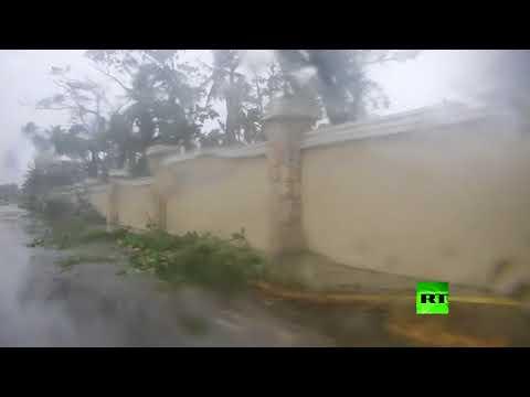 المغرب اليوم  - شاهد إعصار ماريا يقلع الأشجار من جذورها