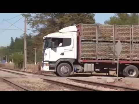 المغرب اليوم  - شاهد قطار مسرع يطيح بشاحنة