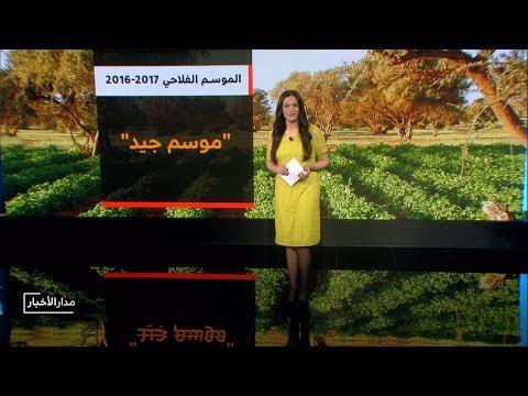 المغرب اليوم  - شاهد حصيلة الإنتاج النهائي من الحبوب الرئيسية في المغرب