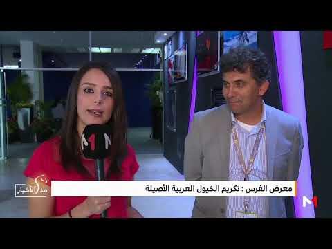المغرب اليوم - شاهد تكريم الخيول العربية الأصيلة خلال معرض الفرس