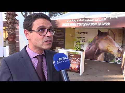 بالفيديو مشاهد من الملتقى الدولي للخيول في الدار البيضاء