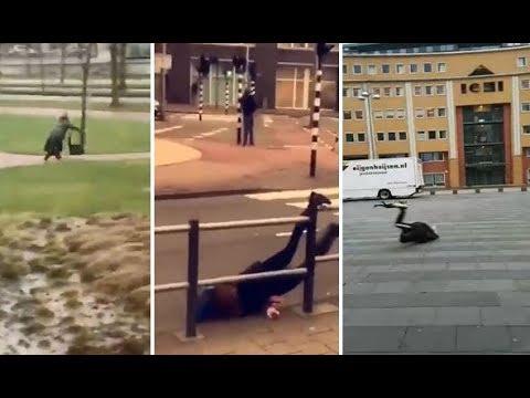 شاهد العاصفة الشتوية في هولندا تتلاعب بالمواطنين