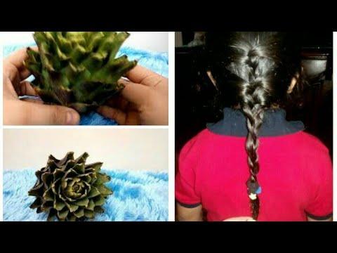بالفيديو كيفية نمو الشعر بخرشوفة واحدة خلال أسبوع
