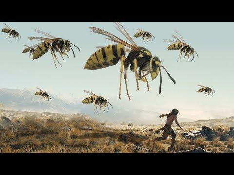شاهد حشرات كانت موجودة منذ 5 مليارات عام