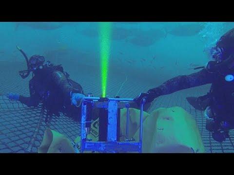 شاهد كاميرا حديثة تحسب وزن سمك التونة في الماء