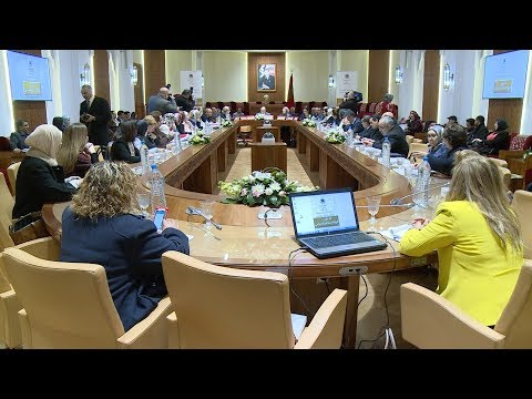 شاهد لقاء في مجلس النواب المغربي عن ميزانية النوع الاجتماعي