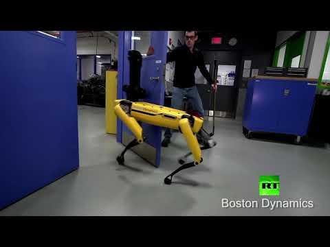 محاولات فاشلة لهروب روبوت