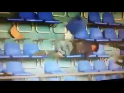 شاهد مشجع من الرجاء ينطق الشهادتين بعد اصابته في شغب مباراة مراكش