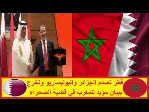 شاهد قطر تصدم الجزائر والبوليساريو وتخرج ببيان مؤيد للمغرب في قضية الصحراء