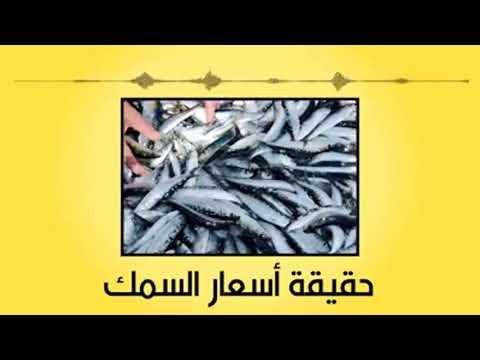 شاهد  حقيقة ارتفاع أسعار السمك في المملكة المغربية