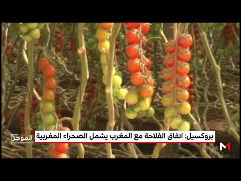 شاهد دمج الصحراء المغربية في الاتفاق الفلاحي مع المملكة