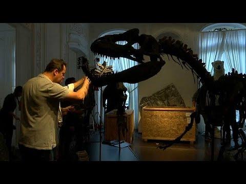 ديناصوران للبيع بمزاد علني في باريس الأسبوع المقبل