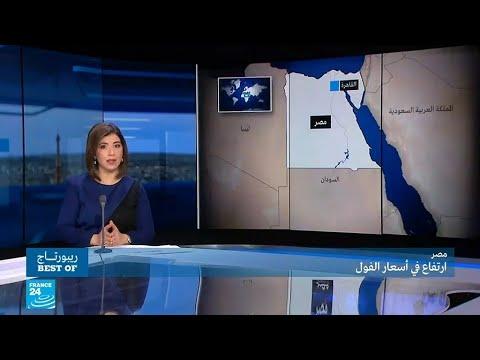 شاهد  خطط الحكومة المصرية لمواجهة أزمة ارتفاع أسعار الفول