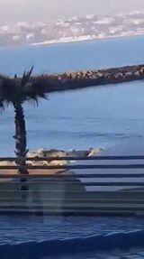 شاهد عمليات هجرة غير شرعية في شاطئ الغندوري بواسطة الدراجات المائية