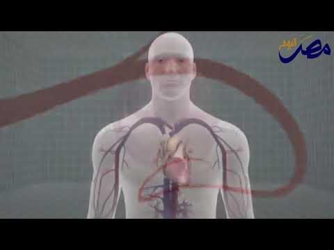 بالفيديو  تعرف على صحة قلبك من محيط خَصرك