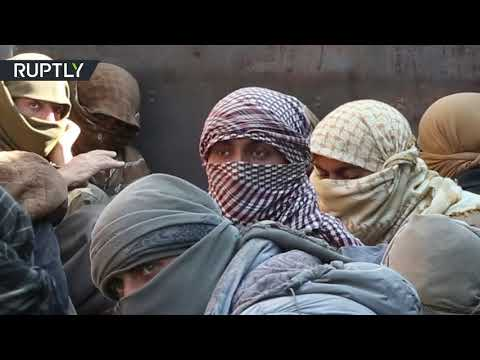 شاهد شاحنات تنقل عناصر داعش من آخر جيب لهم