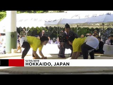 شاهد اليابان تُنظم دورة نسائية استثنائية في رياضة السومو