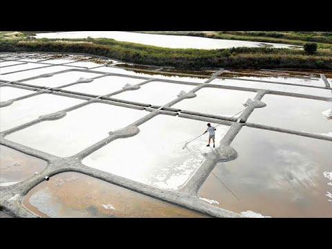 طريقة استخراج أحد أفخر أنواع الملح في العالم في فرنسا