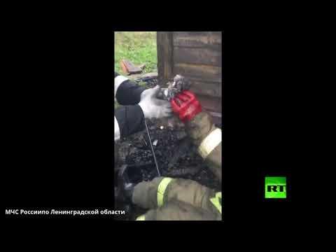 شاهد رجل إطفاء ينقذ قطة من تحت أنقاض منزل تعرض للحريق